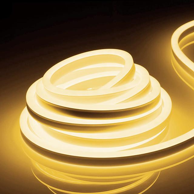 ZDM 32.8ft/10m Waterproof Neon Light Flexible 2835 120 LEDs/M  Strip Light for Christmas Lighting Decor Indoor Outdoor Home AC 220V EU Plug
