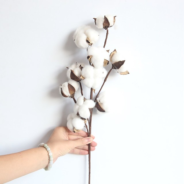 1 Branch Natural Dry Cotton Branch Home Decor Living Room Creative Display Artificial Flowers