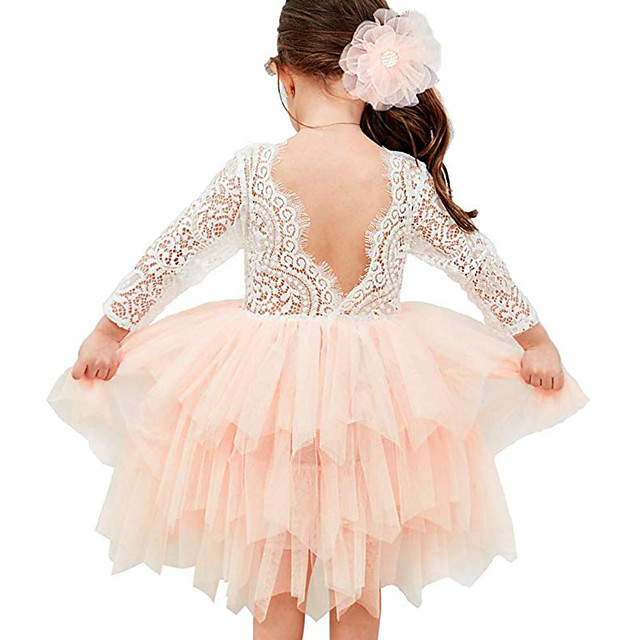 Kids Toddler Little Girls' Dress Color Block Flower Tutu Dress Mesh Lace Lace Trims White Blushing Pink Beige Asymmetrical 3/4 Length Sleeve Active Cute Dresses Children's Day Regular Fit 1-12 Years