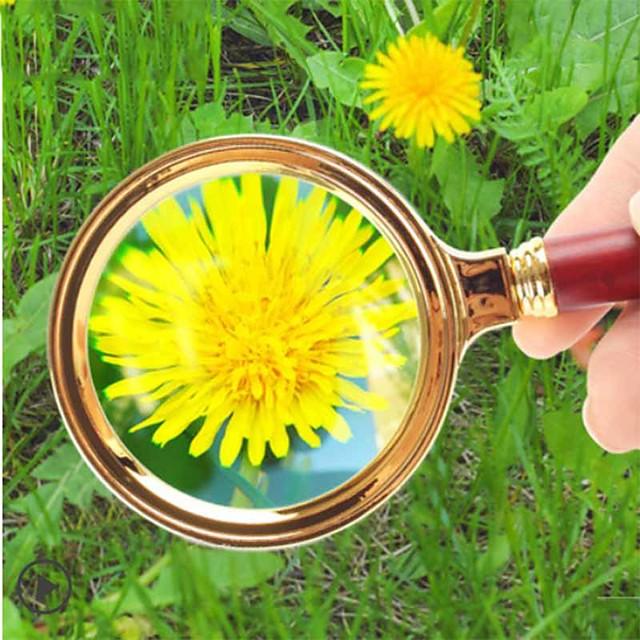 Magnifier Magnifying Glass Set Handheld High Magnification 20 Magnifiers / Magnifier Glasses Reading Inspection 80 mm Plastic Outdoor Indoor Seniors