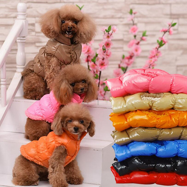 Dog Cat Vest Solid Colored Headwarmers Casual / Sporty Dog Clothes Breathable Black Red Blue Costume Cotton S M L
