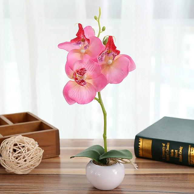 Three Round Phalaenopsis Bonsai With Ceramic Holder Whole H28cm, Holder H4.5cm