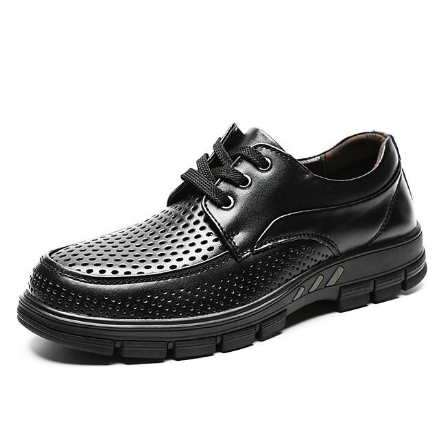 Men's Spring / Summer Vintage Daily Oxfords Walking Shoes Cowhide Wear Proof Black / Brown