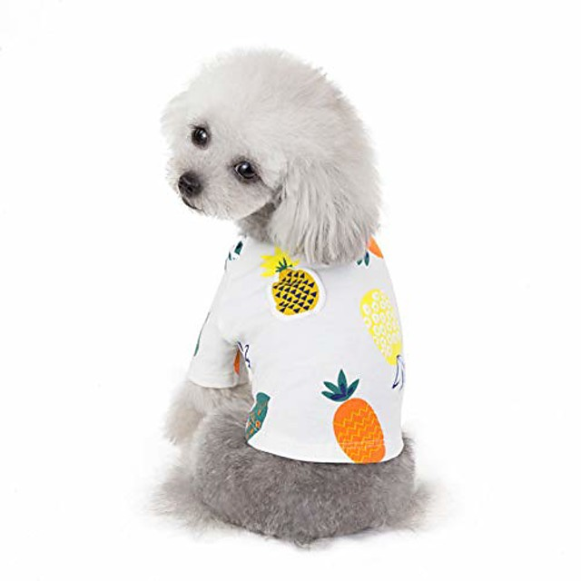 pet clothes, cute pineapple printed puppy dog shirt soft cotton summer costumes for small dogs (xl, white)