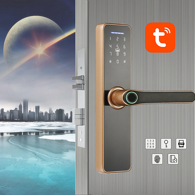 WAFU tuya WIFI Intelligent Fingerprint Indoor Lock for Home Hotel Office Electronic Fingerprint Password Door Lock(WF-007)