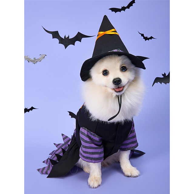 Dog Halloween Costumes Dress Pumpkin Party Cosplay Party Halloween Winter Dog Clothes Puppy Clothes Dog Outfits Breathable Purple Costume for Girl and Boy Dog Polyster M L XL