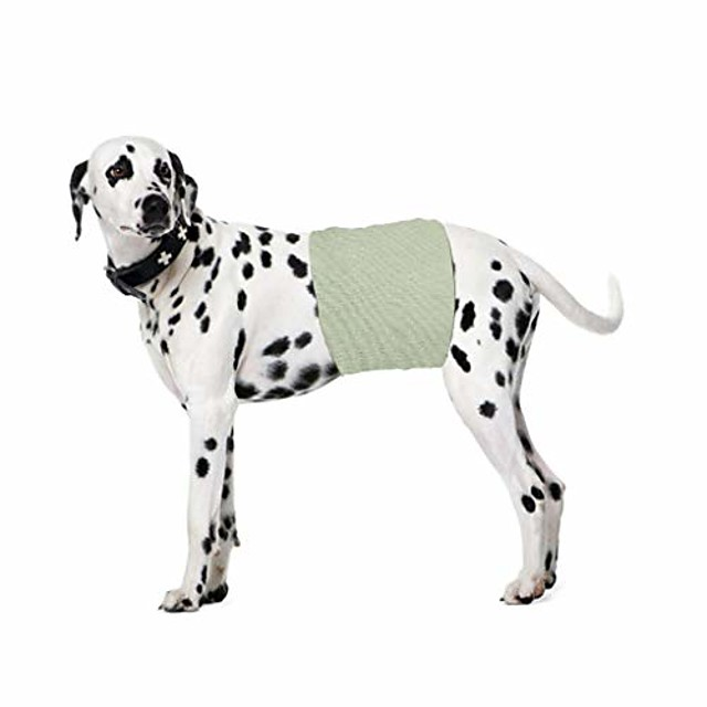 new dog puppy health pets menstrual physiological pet safety physiology pants sloid color
