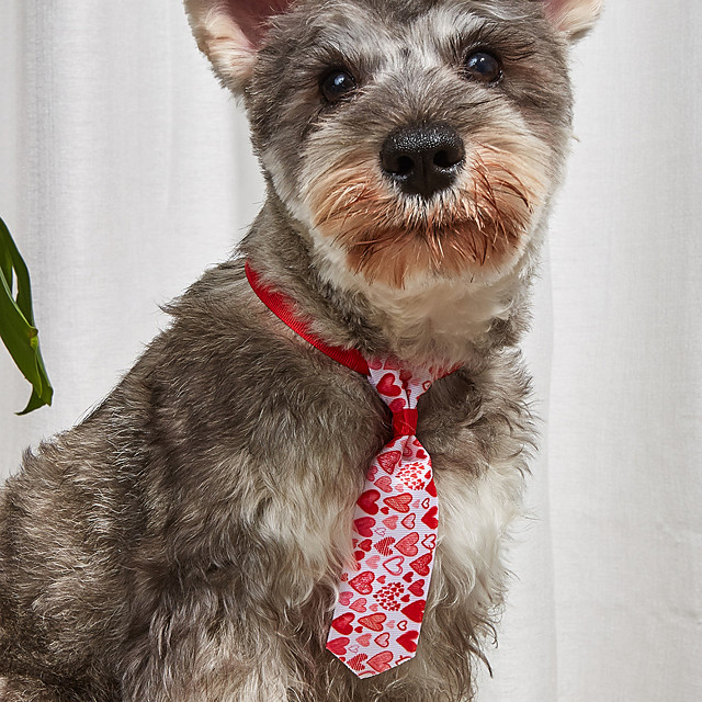 Dog Cat Collar Ornaments Tie / Bow Tie Bowknot Embroidered Cute Sweet Wedding Party Valentine's Day Dog Clothes Puppy Clothes Dog Outfits Adjustable Red Costume for Girl and Boy Dog Polyester One-Size