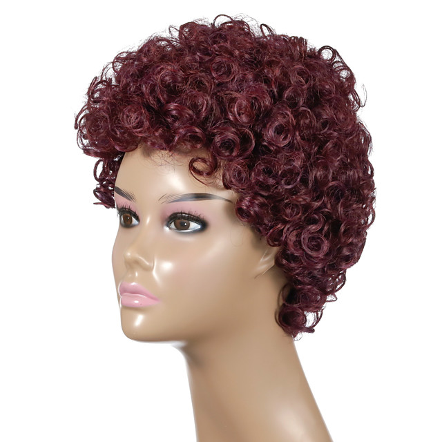 Synthetic Wig Afro Curly Asymmetrical Wig 24 inch Wine Red Synthetic Hair Women's Party Fashion Comfy Burgundy