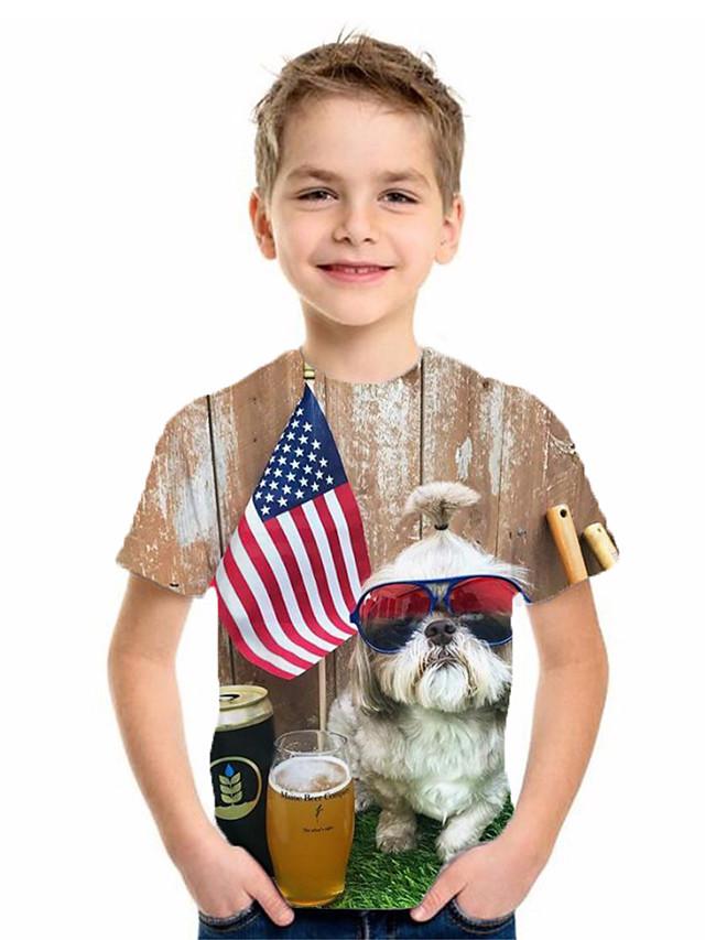 Kids Boys' Basic Flag Short Sleeve Tee Brown
