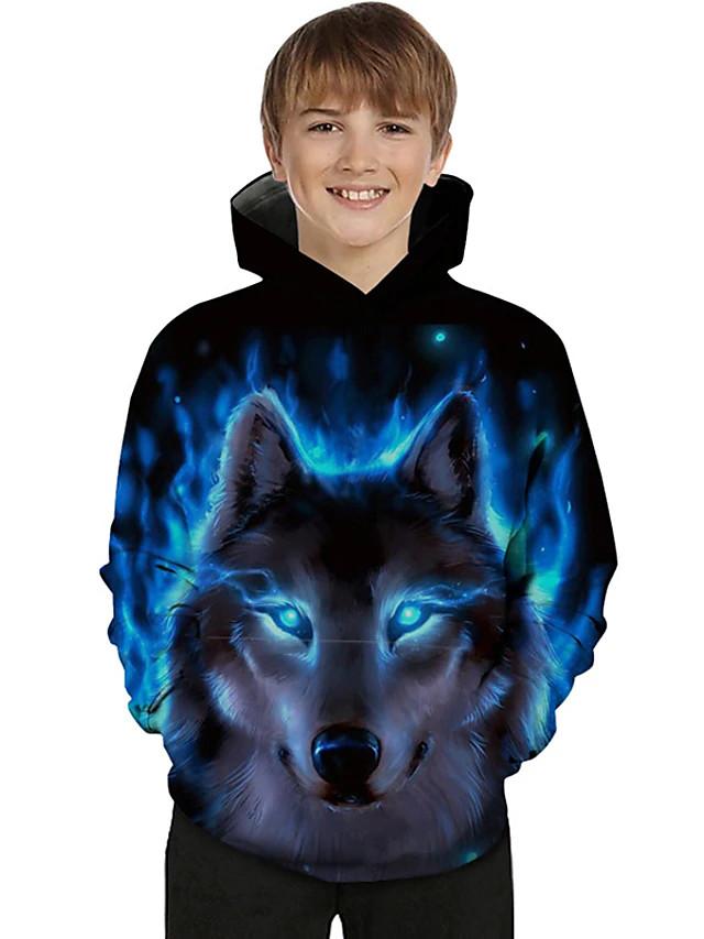 Kids Toddler Boys' Hoodie & Sweatshirt Long Sleeve 3D Print Galaxy Wolf Animal Color Block Print Light Blue Blue Purple Children Tops Active Basic Novelty 2-13 Years
