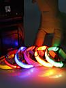 Vit / Grön / Blå / Rosa - LED Lampor - Nylon - Halsband - till Hundar / Katter