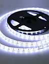 ZDM  Waterproof  5m 300 LEDs 3528 SMD 8mm Warm White Cold  White  Red Blue Green  Cuttable  DC12 V  IP65 Self-adhesiv