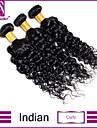 3 paket Indiskt hår Lockigt Klassisk Curly Weave Obehandlad hår Human Hår vävar Hårförlängning av äkta hår Människohår förlängningar / 10A