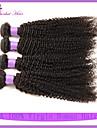 Human Hår vävar Brasilianskt hår Sexigt Lockigt 6 månader 4 delar hår väver