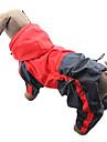 Katt Hund Regnjacka Hundkläder Färgblock Röd Grön Nylon Kostym Till Bulldogg Shiba Inu Cocker Spaniel Vår & Höst Sommar Herr Dam Vattentät Vindtät