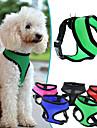 Hund Selar Andningsfunktion Justerbara / Infällbar Enfärgad Nät Nylon Svart Purpur Grön