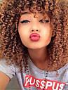 Äkta hår Spetsfront Peruk stil Brasilianskt hår Kinky Curly Peruk 130% 150% 180% Hårtäthet med babyhår Naturlig hårlinje Afro-amerikansk peruk 100 % handbundet Dam Korta Mellan Äkta peruker med hätta