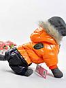 Hund Kappor Huvtröjor Vinter Hundkläder Orange Gul Röd Kostym Cotton Färgblock Håller värmen Vindtät Sport XS S M L XL XXL