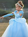 Prinsessa Cinderella Vintage Cosplay Lolita Klänningar Flickor Kostym Purpur / Blå Vintage Cosplay Kortärmad