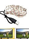 2m LED Light Strips Flexible Tiktok Lights 120 LEDs SMD2835 Warm White Cold White USB Party Decorative USB Powered 1pc