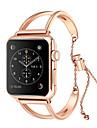 Watch kapela pro Apple Watch Series 5/4/3/2/1 Apple Design šperků Nerez Poutko na zápěstí