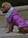 Hund Kappor Vinter Hundkläder Purpur Fuchsia Grön Kostym Corgi Beagle Bulldogg Terylen Enfärgad Ledigt / vardag Uppvärmning S M L XL XXL