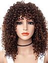 Syntetiska peruker Afro Kinky Gratis del Peruk Mellan Brun / Bourgogne Syntetiskt hår 18 tum Dam Dam syntetisk Till färgade kvinnor Brun