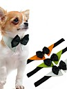 Hund Katt Knyta / Fluga Hundkläder Vit Orange Grön Kostym Mops Bichon Frisé Pekinges Tyg Enfärgad Huvudbonader Rosett S M L XL
