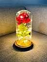 Beauty and The Beast Rose Red Silk Rose LED Lights Lasts Forever in Glass Dome on Wooden Base Gift for Valentine\'s Day Wedding Anniversary Birthday