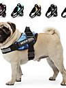 Hund Selar Reflekterande Andningsfunktion Justerbara / Infällbar Prickig Multifärgad Hjärta Tyg Svart Marin Regnbåge