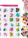 2 lådor torkade blommor för nagelkonst kissbuty 24 färger torra blommor mini riktiga naturliga blommor nagelkonst leveranser (gipsofila blommor blad)