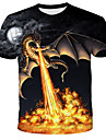 Men\'s T shirt Shirt Graphic Flame Print Short Sleeve Daily Tops Streetwear Exaggerated Round Neck Rainbow