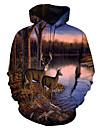 Miesten Pullover-huppari Kuvitettu Eläin Hupullinen Päivittäin Bile 3D-tulostus Perus Vapaa-aika Hupparit paidat Pitkähihainen Sateenkaari