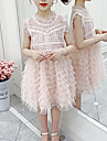 Kids Little Girls\' Dress Solid Colored Birthday Party Festival Lace White Blushing Pink Knee-length Sleeveless Princess Sweet Dresses Summer Regular Fit 3-13 Years