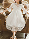 Kids Little Girls\' Dress White Jacquard Party Birthday Party Embroidered Lace White Midi Princess Sweet Dresses Summer