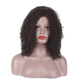 Synthetic Wig Curly Afro Jerry Curl Afro Jerry Curl Layered Haircut Wig Short Medium Length Medium Brown Synthetic Hair Women's Natural Hairline Brown