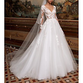 A-Line Wedding Dresses V Neck Sweep / Brush Train Lace Tulle Long Sleeve Plus Size Illusion Sleeve with 2020