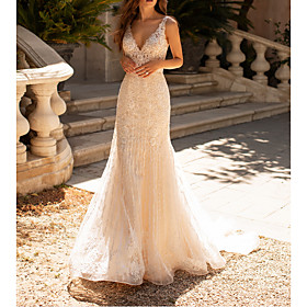 A-Line Wedding Dresses V Neck Court Train Polyester Sleeveless Formal Boho Plus Size with Lace Insert Appliques 2020