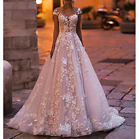 A-Line Wedding Dresses V Neck Court Train Tulle Sleeveless Country Plus Size with Draping Appliques 2020
