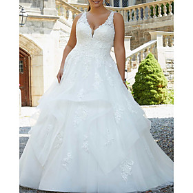 A-Line Wedding Dresses V Neck Watteau Train Lace Tulle Sleeveless Formal Sexy Plus Size with Ruffles Embroidery 2020