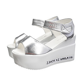 Women's Sandals Wedge Sandals Summer Wedge Heel Open Toe Casual Daily PU White / Black / Silver
