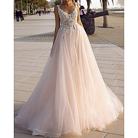 A-Line Wedding Dresses V Neck Spaghetti Strap Sweep / Brush Train Lace Tulle Sleeveless Beach Sexy Backless with Embroidery Appliques 2020
