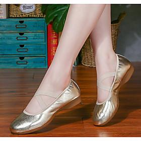Women's Dance Shoes Latin Shoes / Ballroom Shoes / Line Dance Flat Flat Heel Gold / Silver
