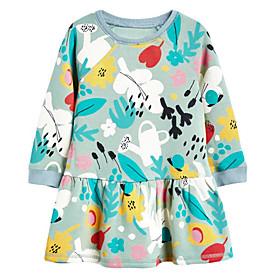 Toddler Girls' Floral Long Sleeve Dress Gray