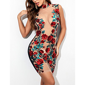 Women's A-Line Dress Short Mini Dress - Sleeveless Floral Rainbow Embroidered Mesh Summer Sexy Club 2020 Red S M L XL