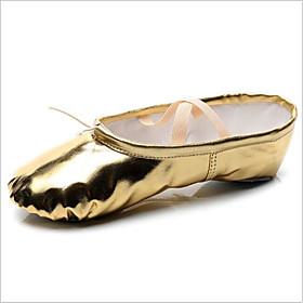 Women's Ballet Shoes Flat Flat Heel Synthetics Gold / Silver / Indoor