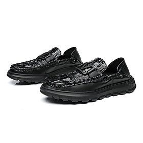 Men's Loafers  Slip-Ons Casual Daily Leather Wear Proof Black Spring / Fall