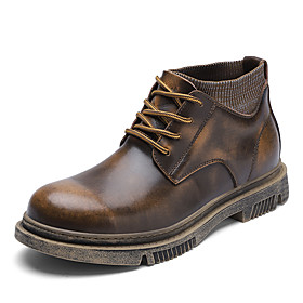 Men's Boots Casual Daily Outdoor Walking Shoes Leather Wear Proof Booties / Ankle Boots Dark Brown / Black Fall / Winter