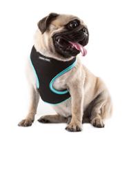 Dog Collars, Harnesses & Lea...